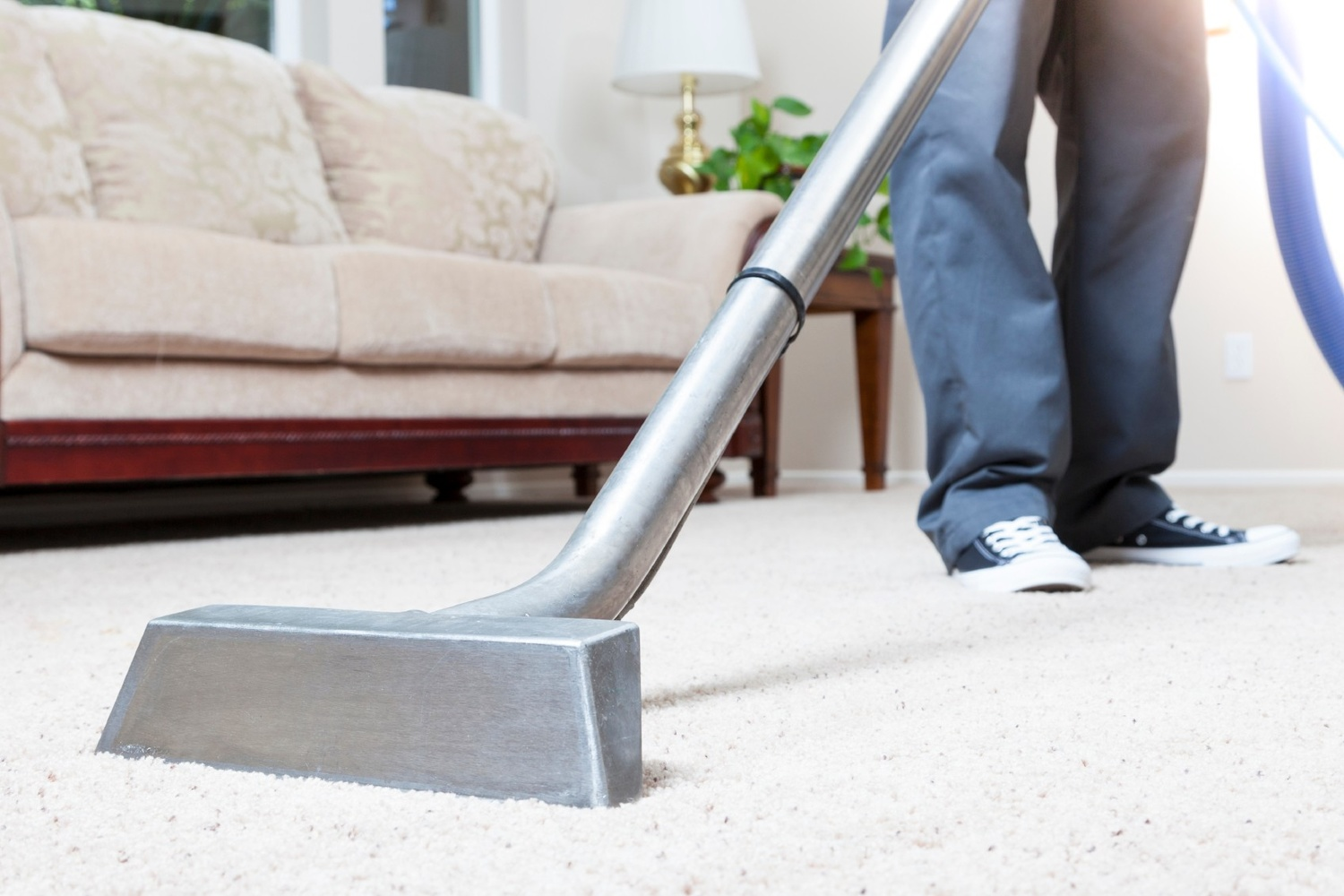 Well-Known Carpet Cleaning Services in Melbourne by James smith