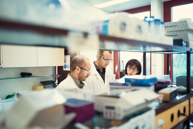 Lab talks by Alexander Petrenko