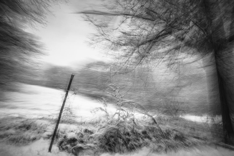Untitled 11 by Adam Vollick