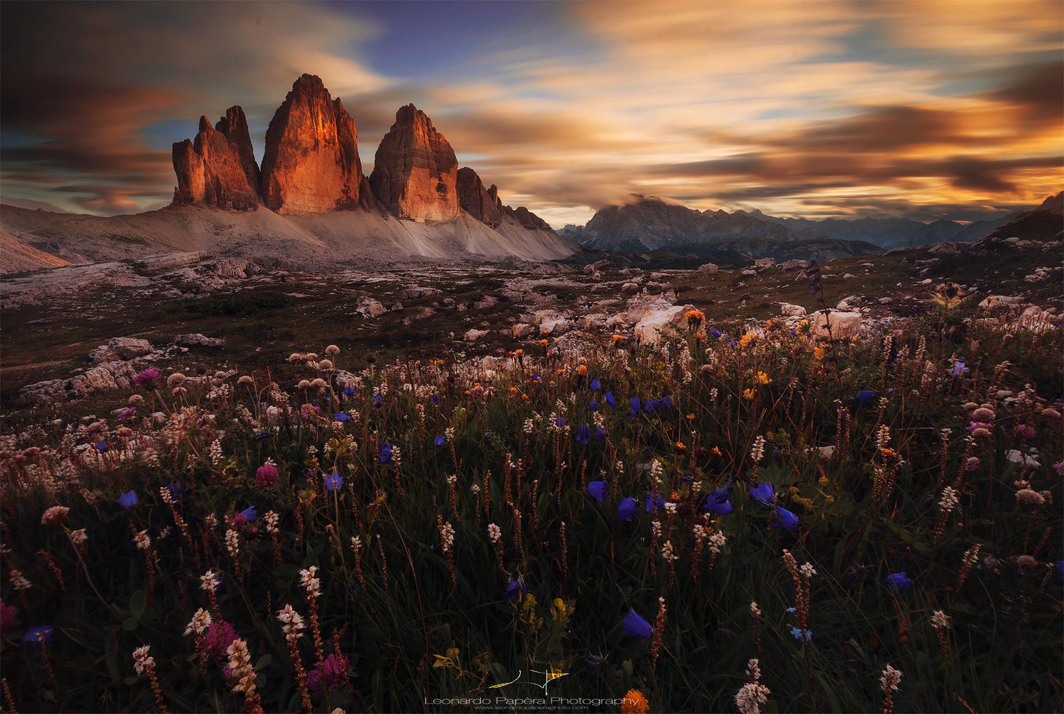 Prehistorical Valley by Leonardo Papèra