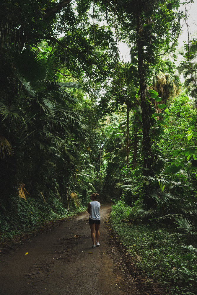 Hidden hawaii by michael king
