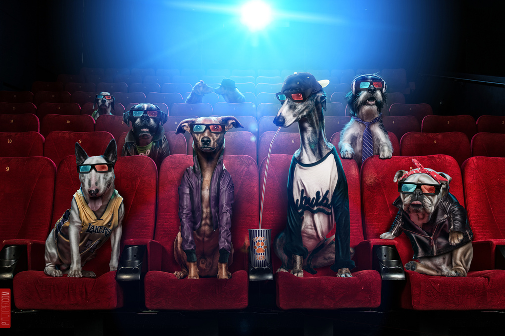 Funimals - Doggy Cinema by Pitu López