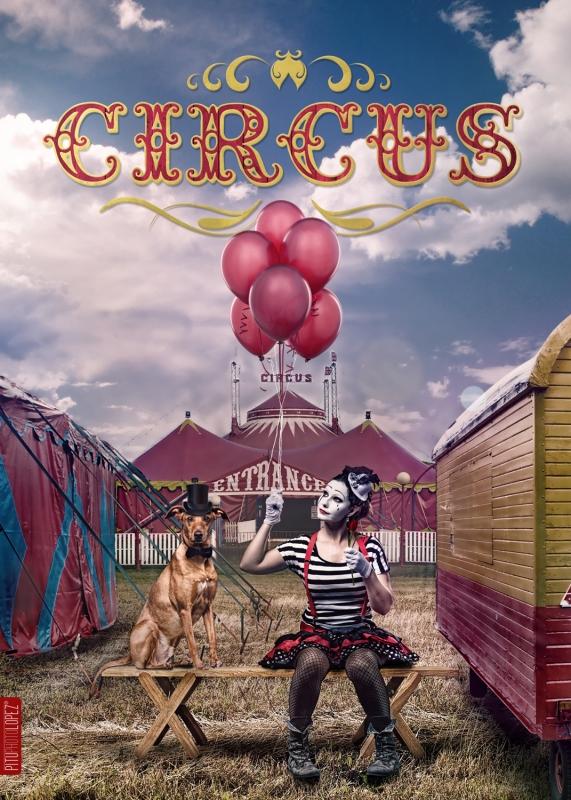 Circus by Pitu López