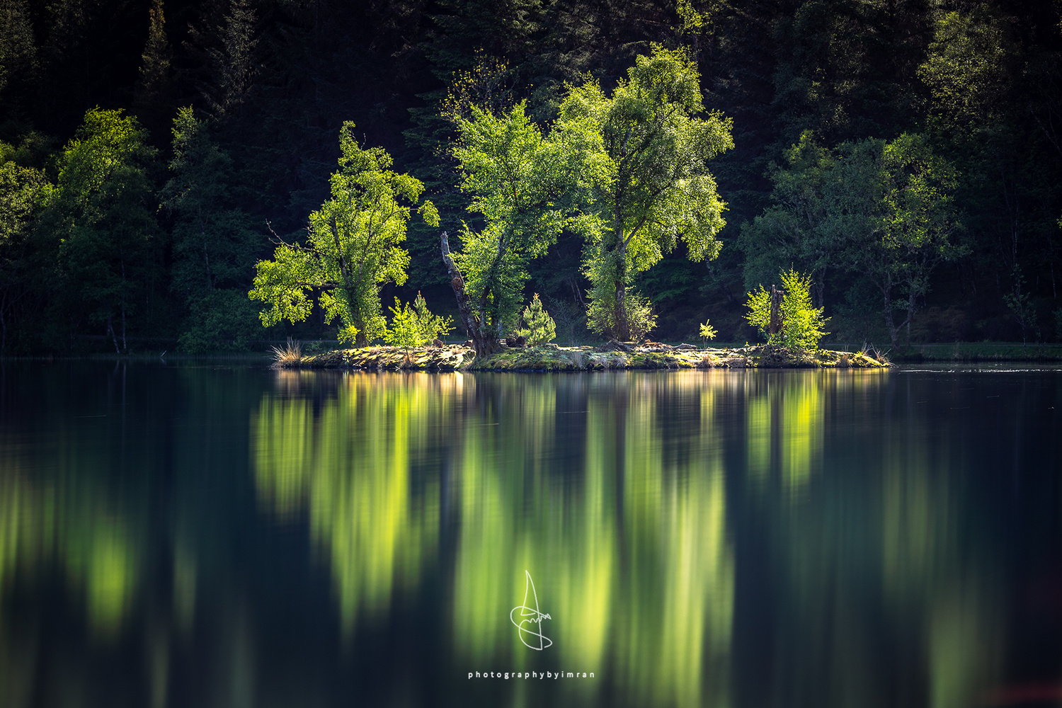 Trees at Glen Coe Lochan by Imran Mirza