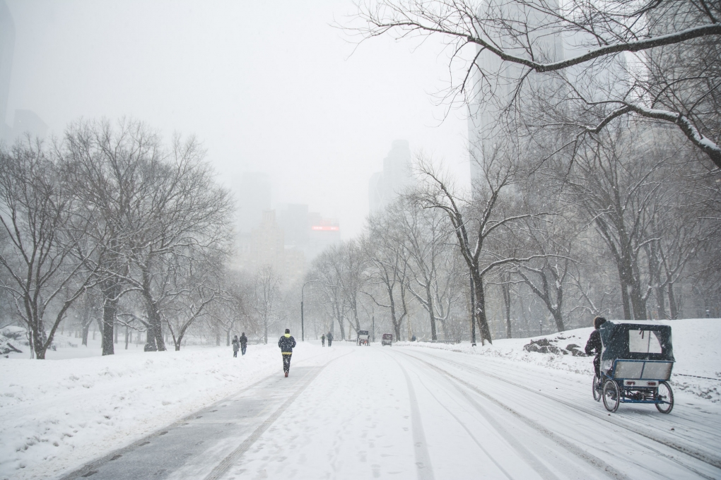 Snow in Central Park by Tam Nguyen
