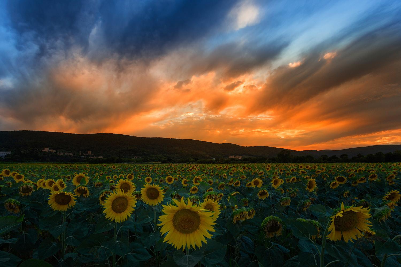 Tuscan sunset by chinmay.ninja 