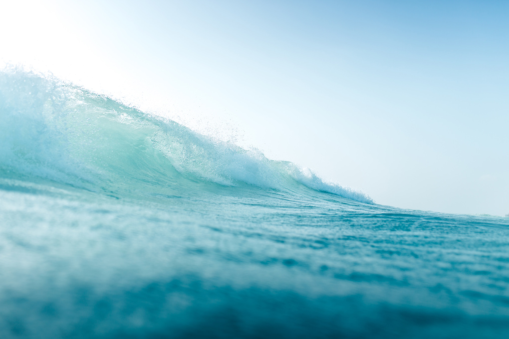 That wave by Shayne Thomas
