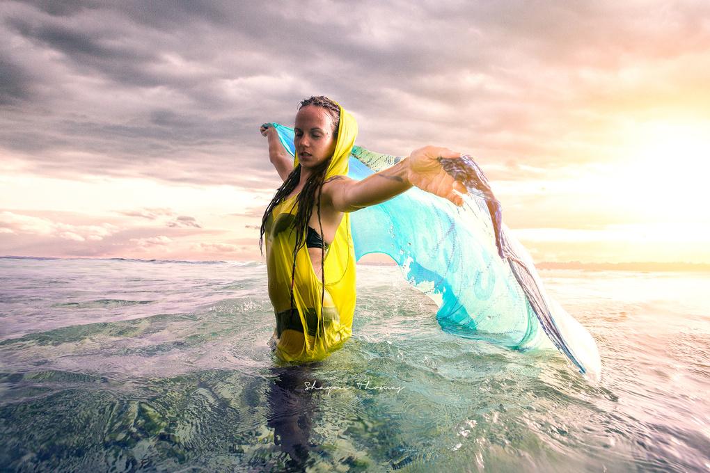 Ocean Dance by Shayne Thomas