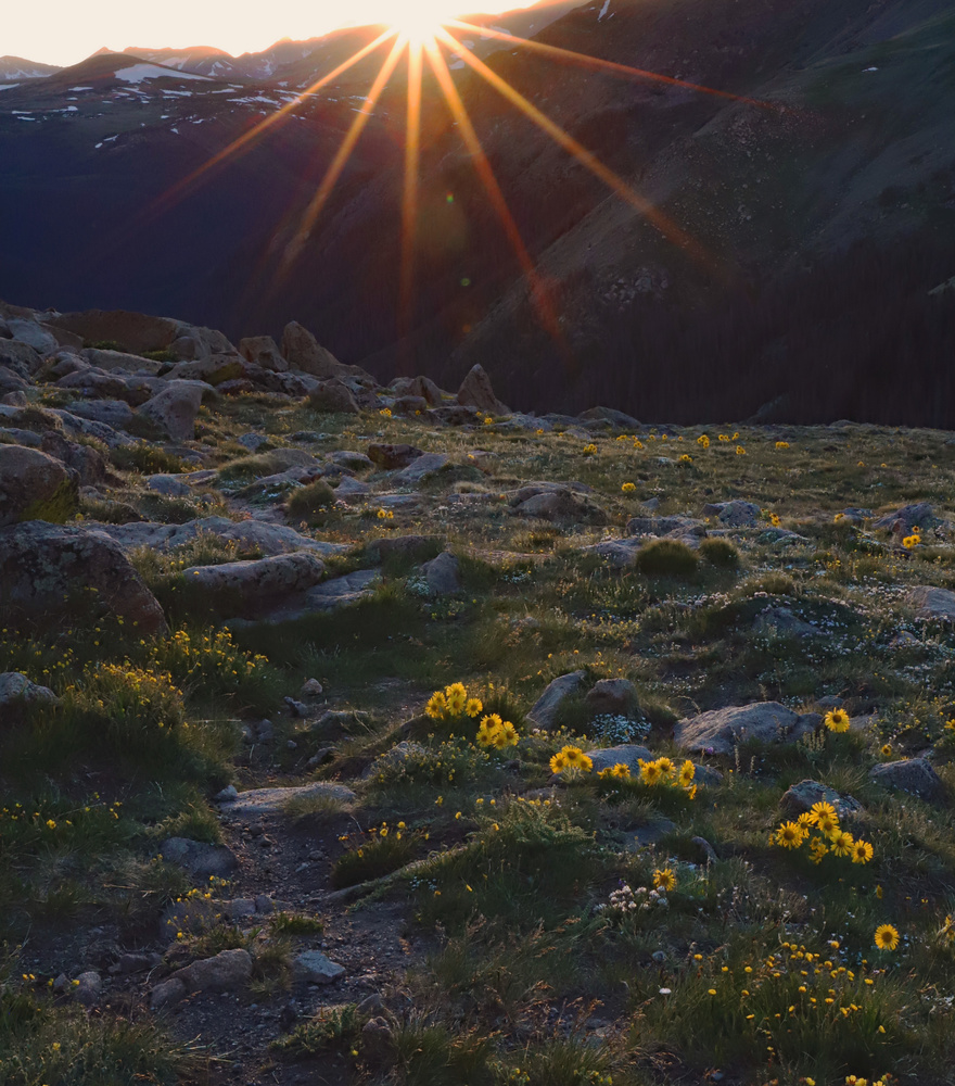 Sunset on The Rockies by Amanda Messer