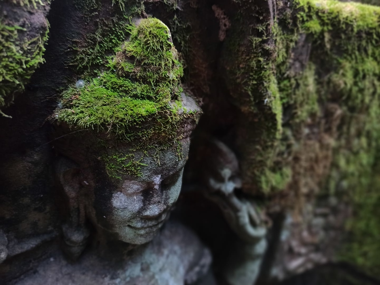 Devata carving covered by moss by affan kasey