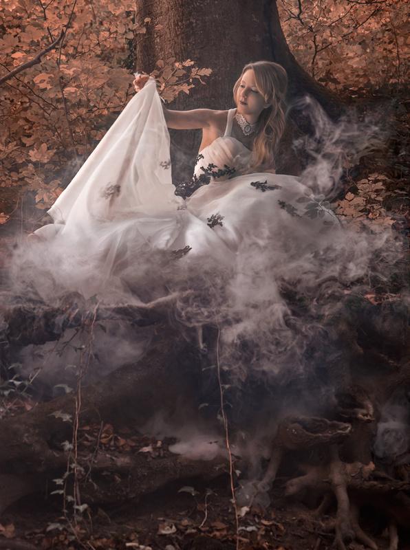 Autumn Bride II by John Flury