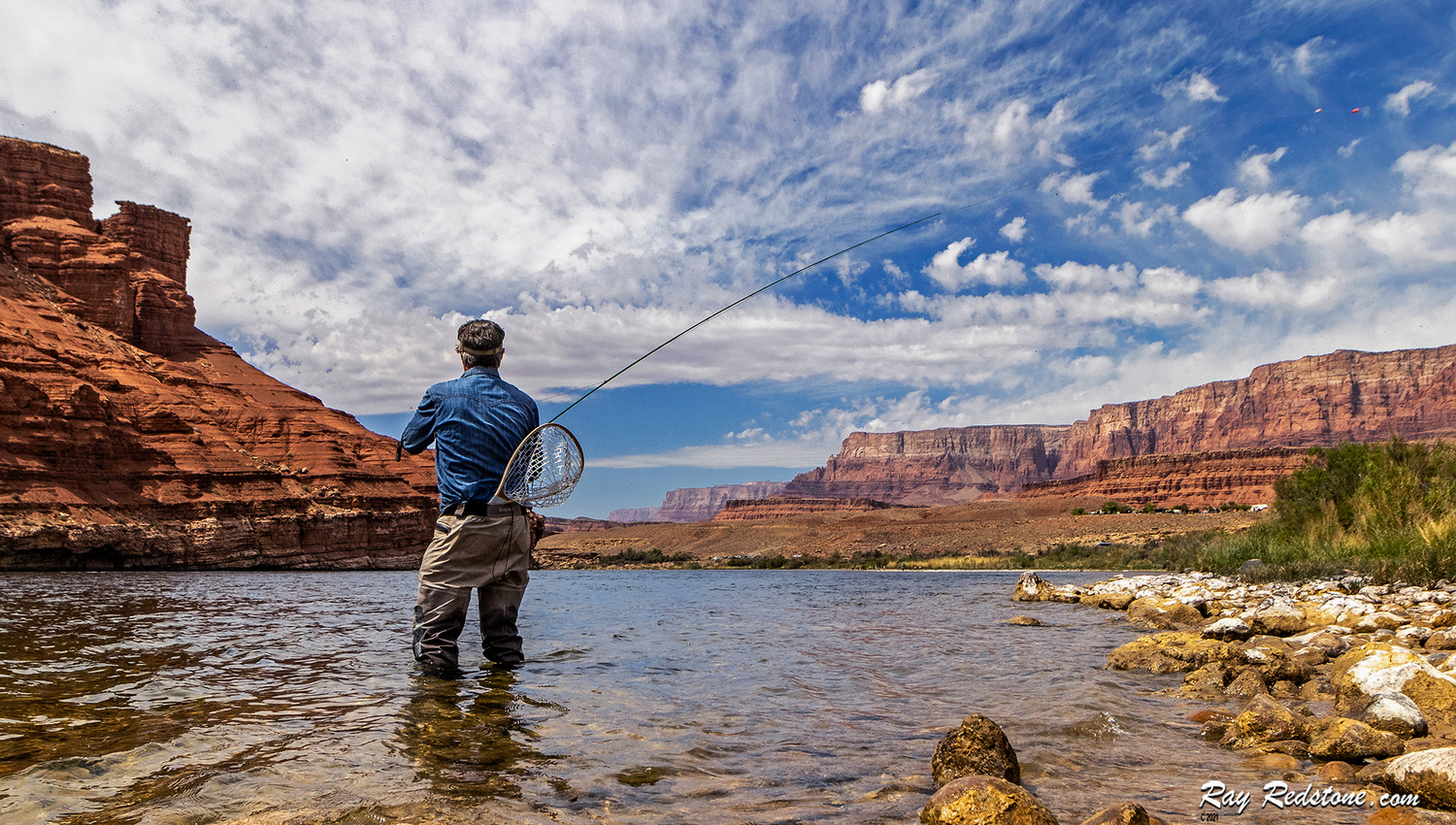 Man Fly-Fishing On The Colorado River At Lees Ferry, AZ by Ray Redstone