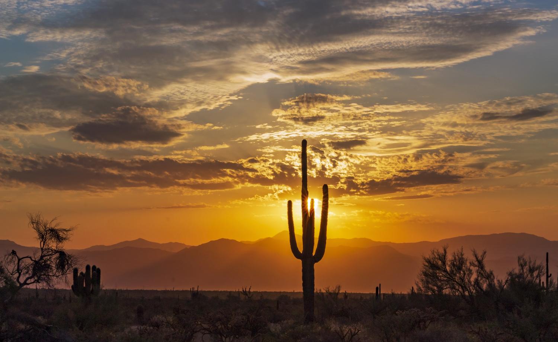Blazing AZ Desert Sunrise by Ray Redstone