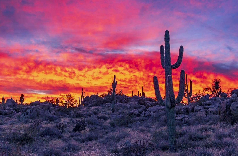 Sky On Fire Sunrise In Arizona Desert by Ray Redstone