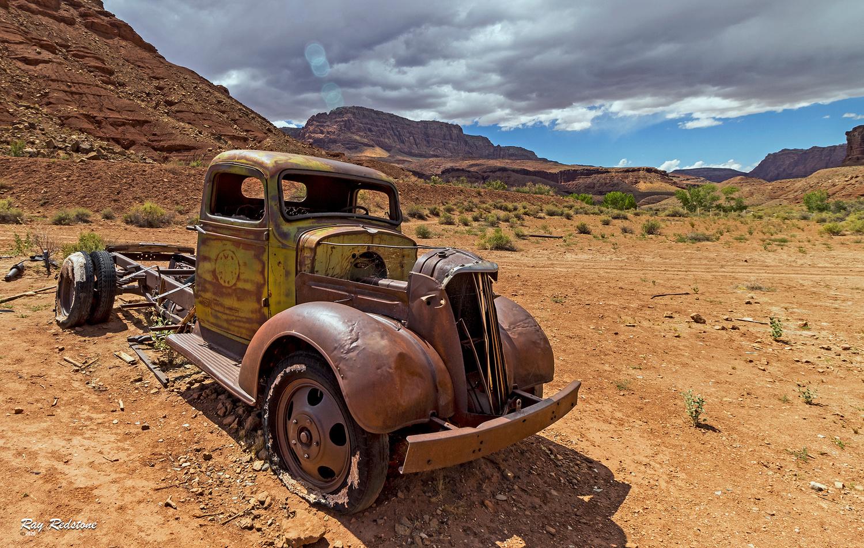 Southwest Desert Relic by Ray Redstone