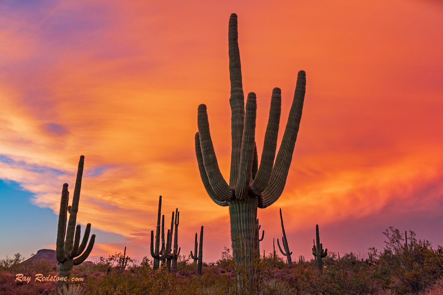 Sky On Fire Sunset In The Arizona Desert by Ray Redstone