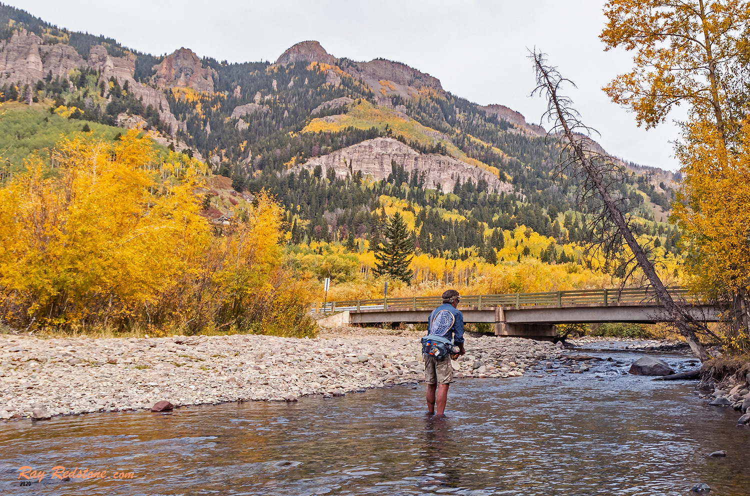 Man Fly-Fishing on a Colorado River At Fall Time by Ray Redstone