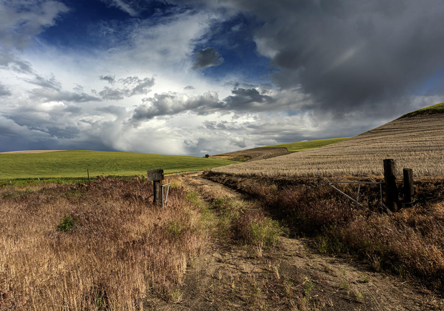 Farm Lane in Eastern Oregon Surrounded by Wheat Fields by Gary Quay