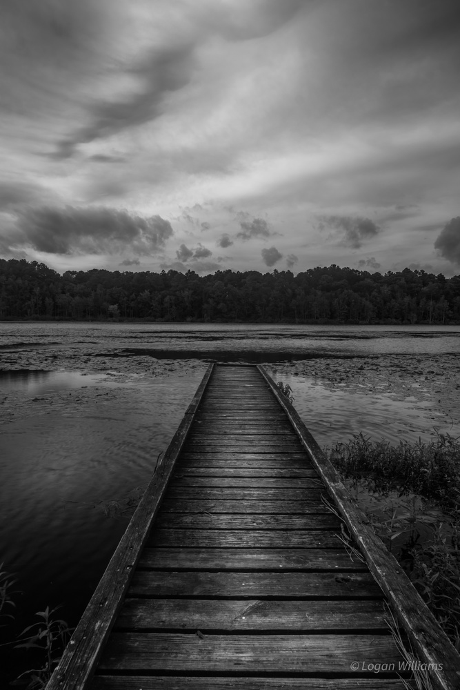 Old Dock by Logan Williams