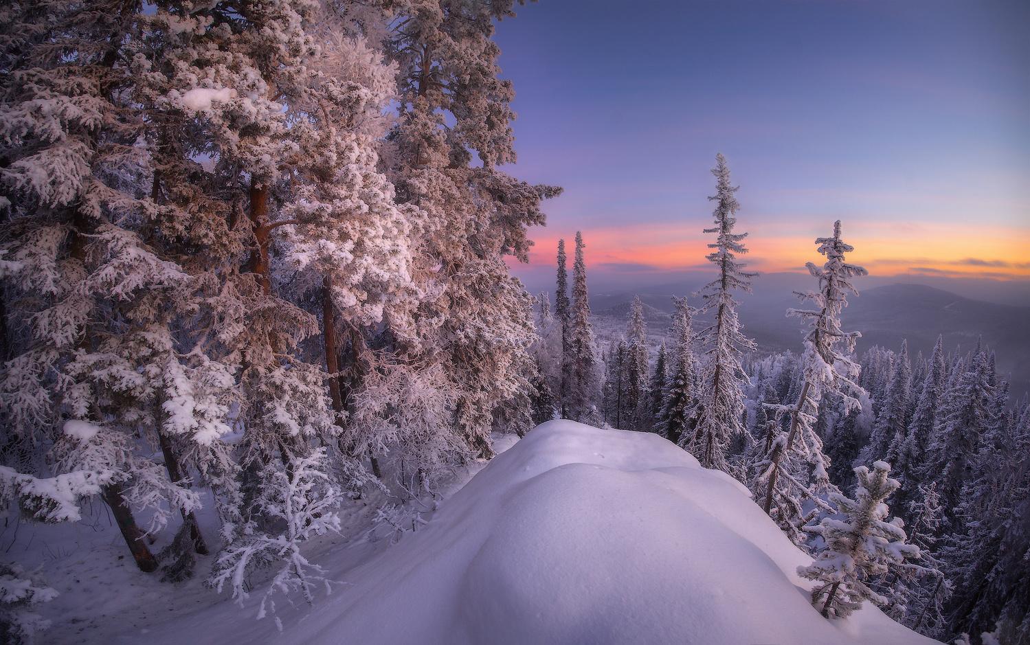 In the morning by Vladimir Lyapin