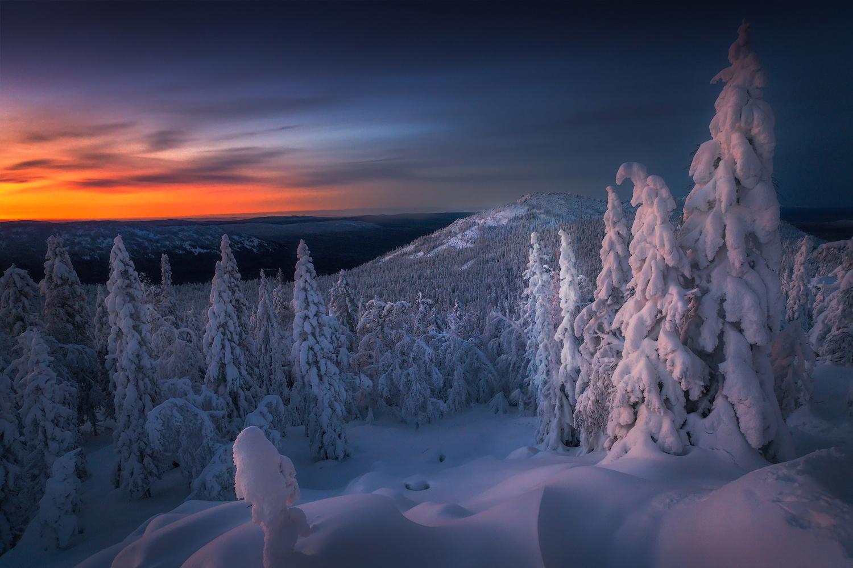 *** by Vladimir Lyapin