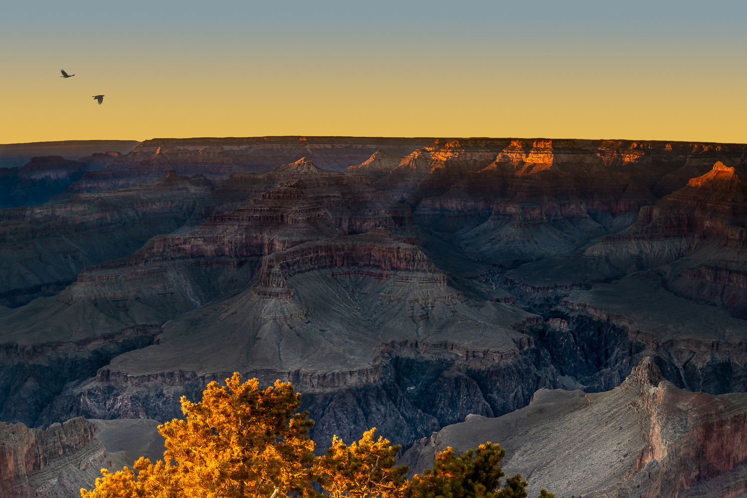 Winter Sunset at the Grand Canyon by Mariano de Miguel