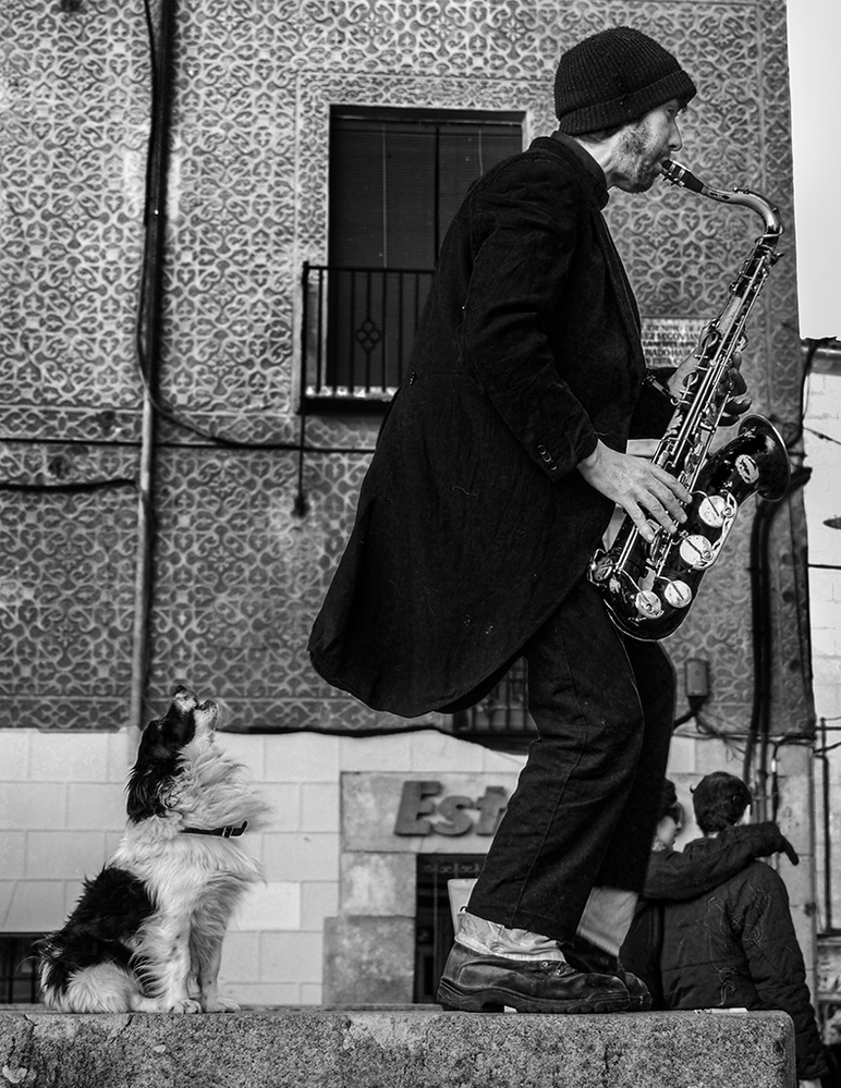 Street performer and singing dog by Mariano de Miguel