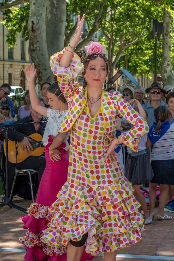 Flamenco Dancer by Jane & Tony Ackerley