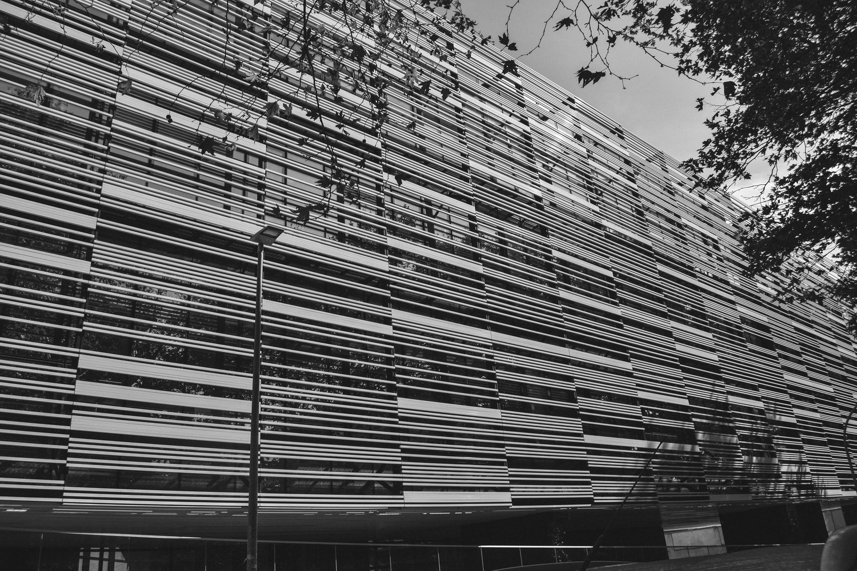 Lines by Antonella Di Mattei