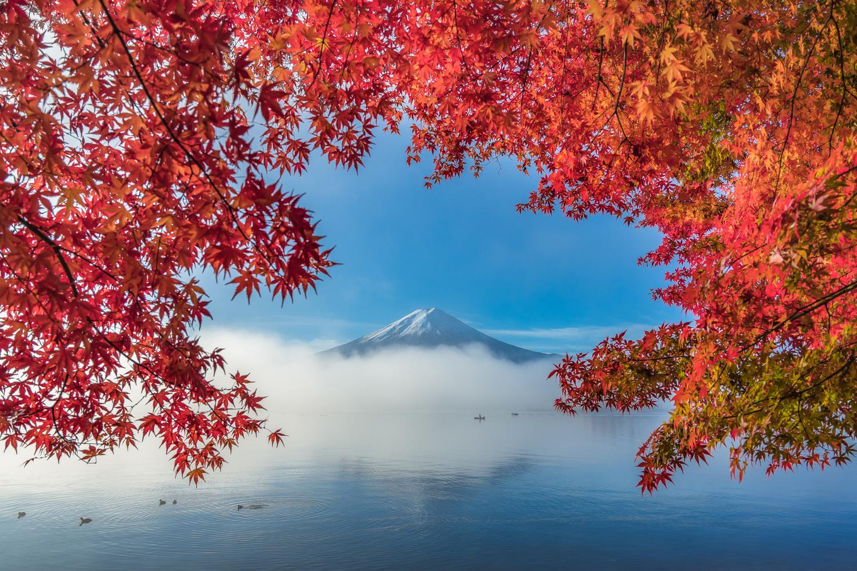 Good morning autumn by Saowanee Suntararak