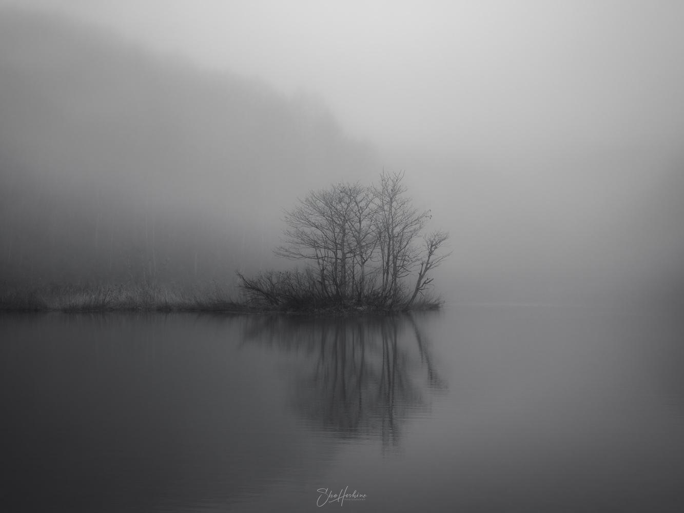 Emerge by Sho Hoshino