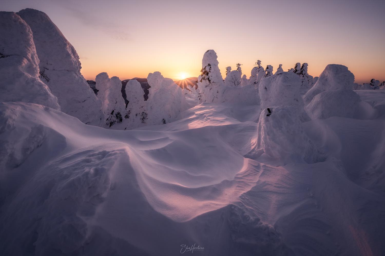 Snow monsters by Sho Hoshino