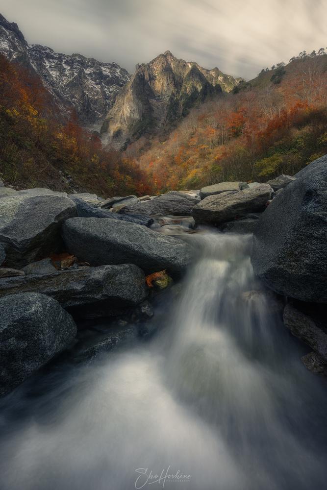 Flow by Sho Hoshino