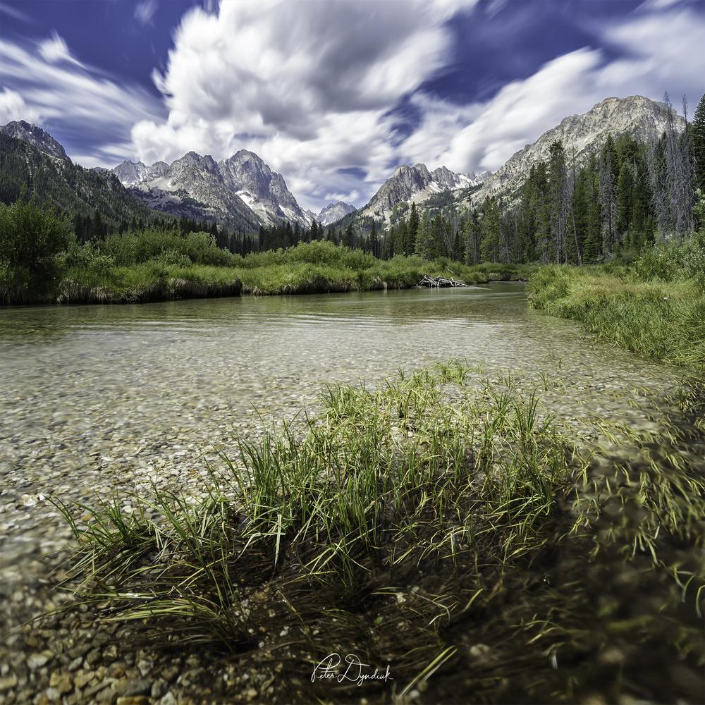 Fishhook Creek Meadow by Peter Dyndiuk