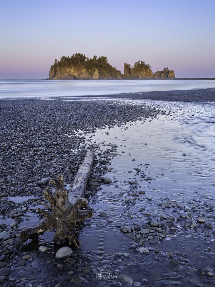 James Island Sunrise by Peter Dyndiuk
