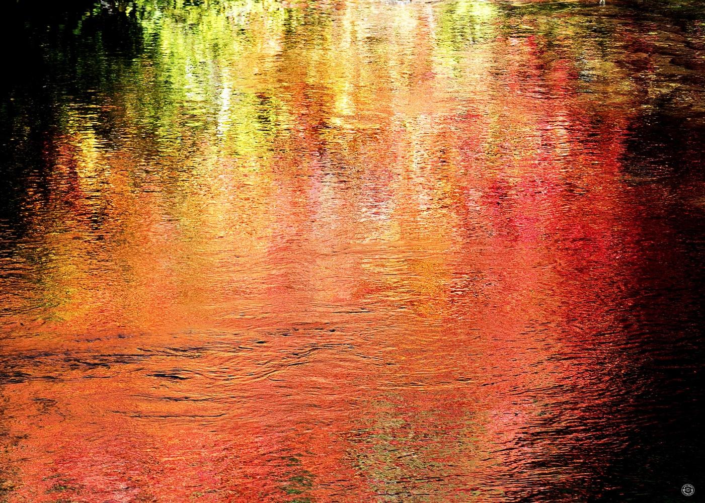Reflection by Darrell Potts