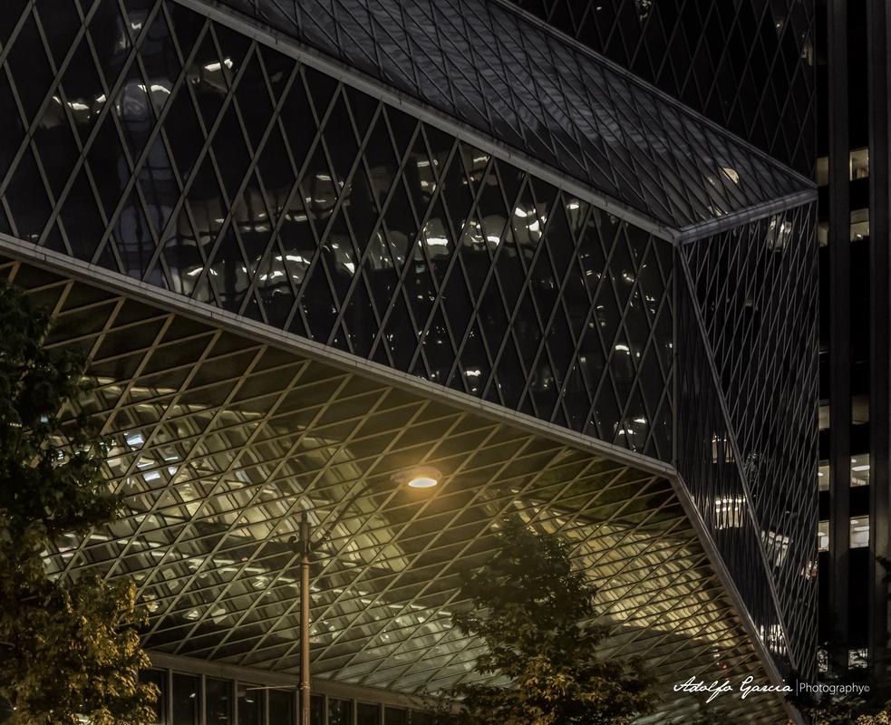 Seattle Library by Adolfo Segar
