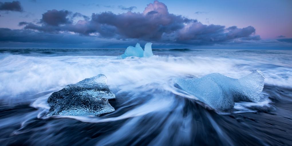 Ice Swan by Thibault BARRON