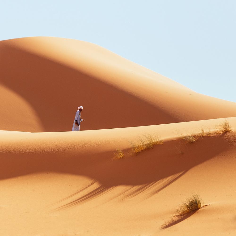 Sahara by Hillary Fox