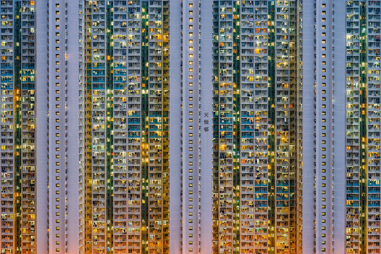 Sardine City by Peter Stewart