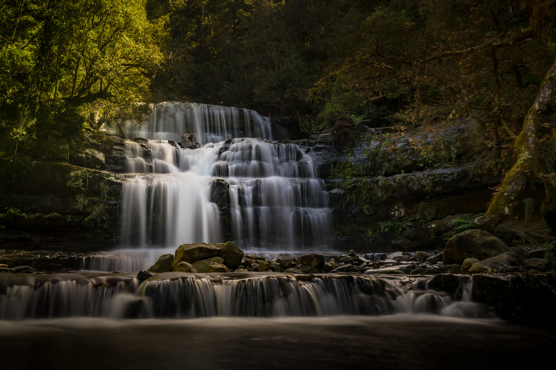 Liffey Falls by Stephen Hansen