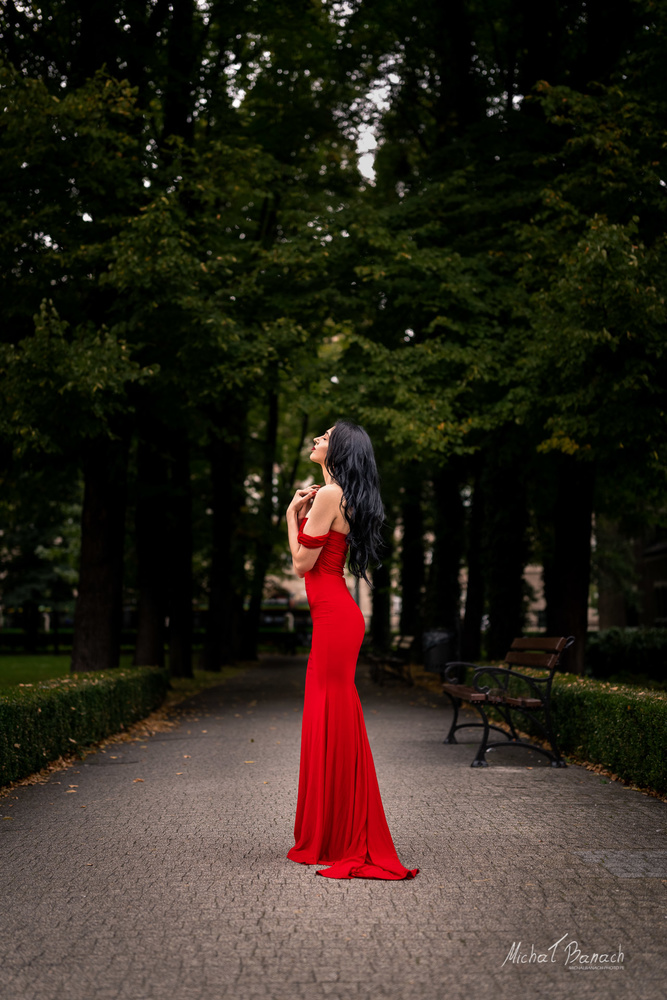 Lady in Red by Michał Banach
