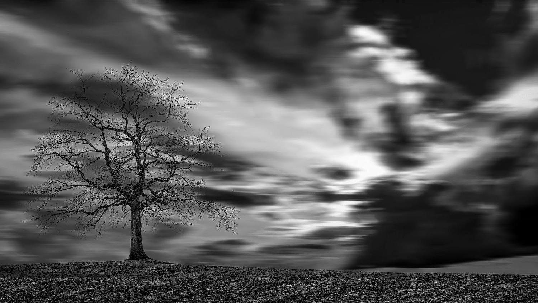 Solitude by Ricardo Sanchez Ruiz