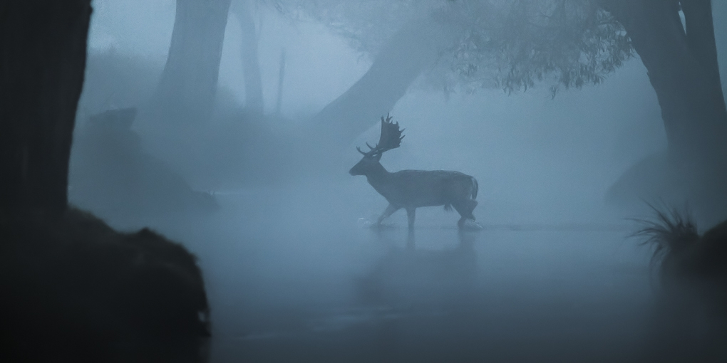 Deer Hunter by Max Bridge