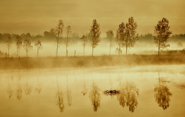Mistic morning by Ilija Stanusic