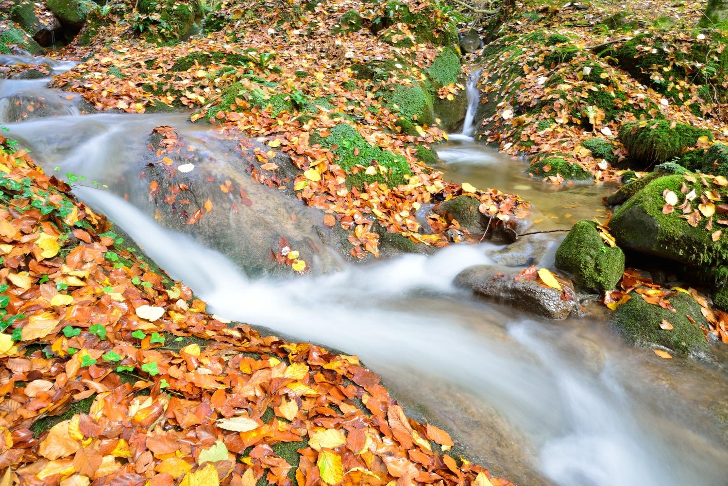 Waterfall by Ilija Stanusic