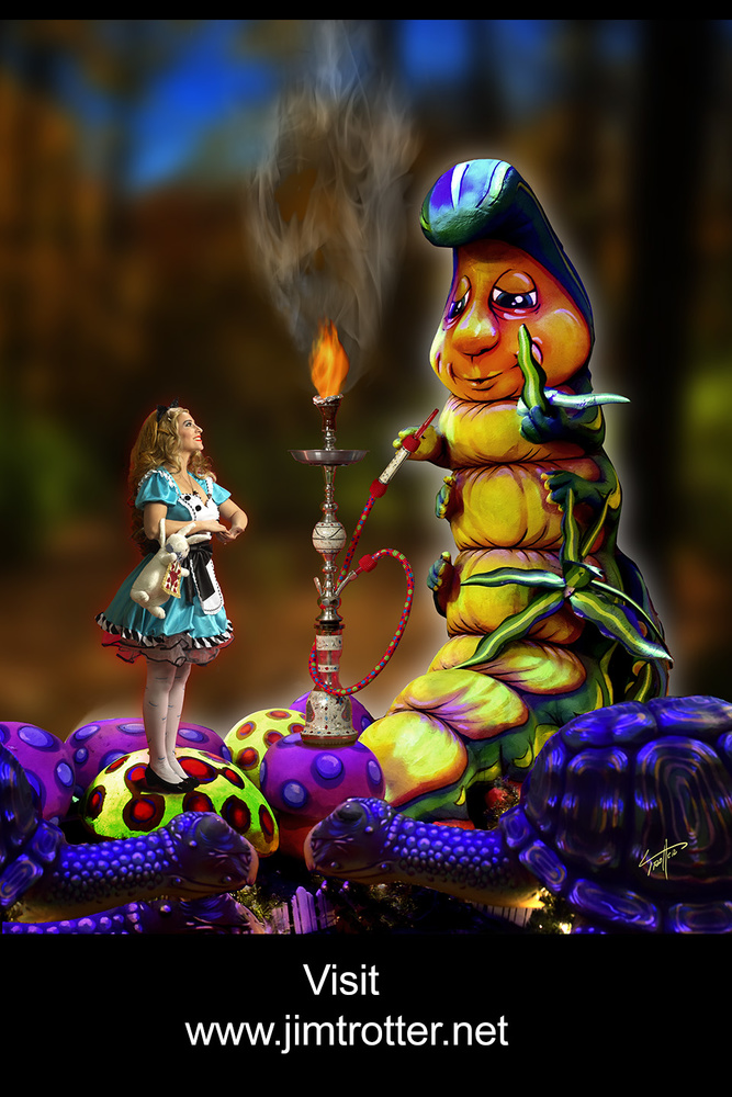 Alice -Mary in Wonderland by jim trotter