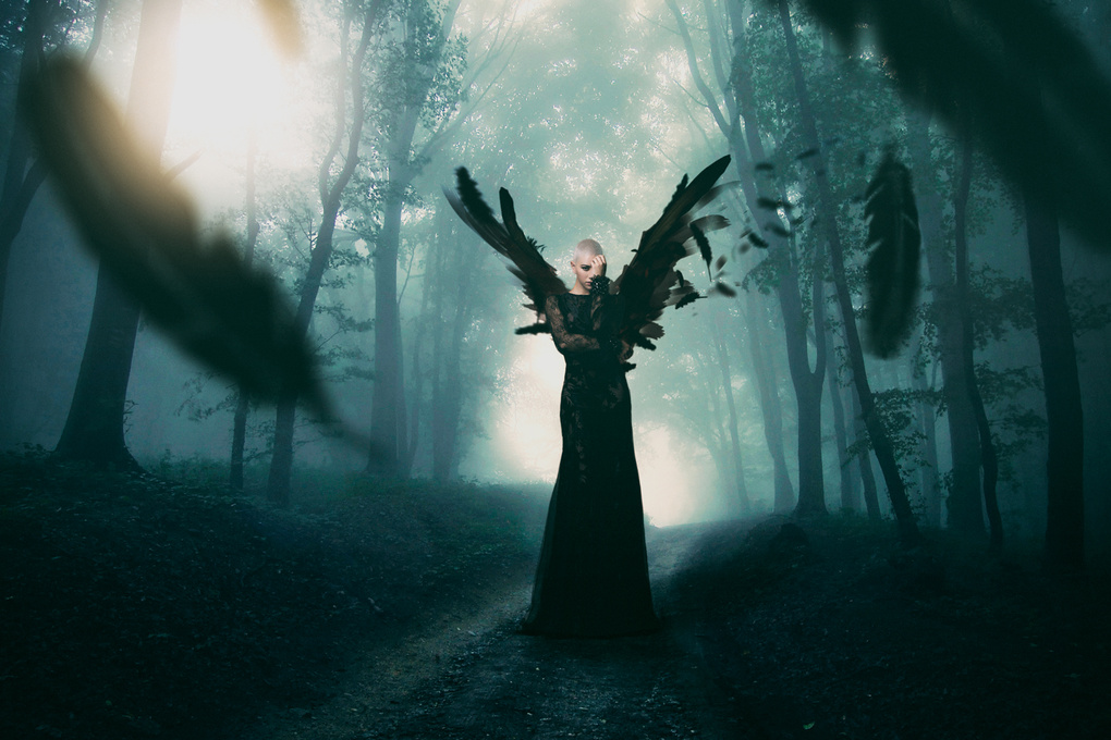 Black Angel by Franck GOMEZ