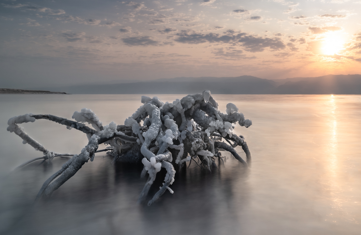 The Dead Sea Monster by German Shtainberg