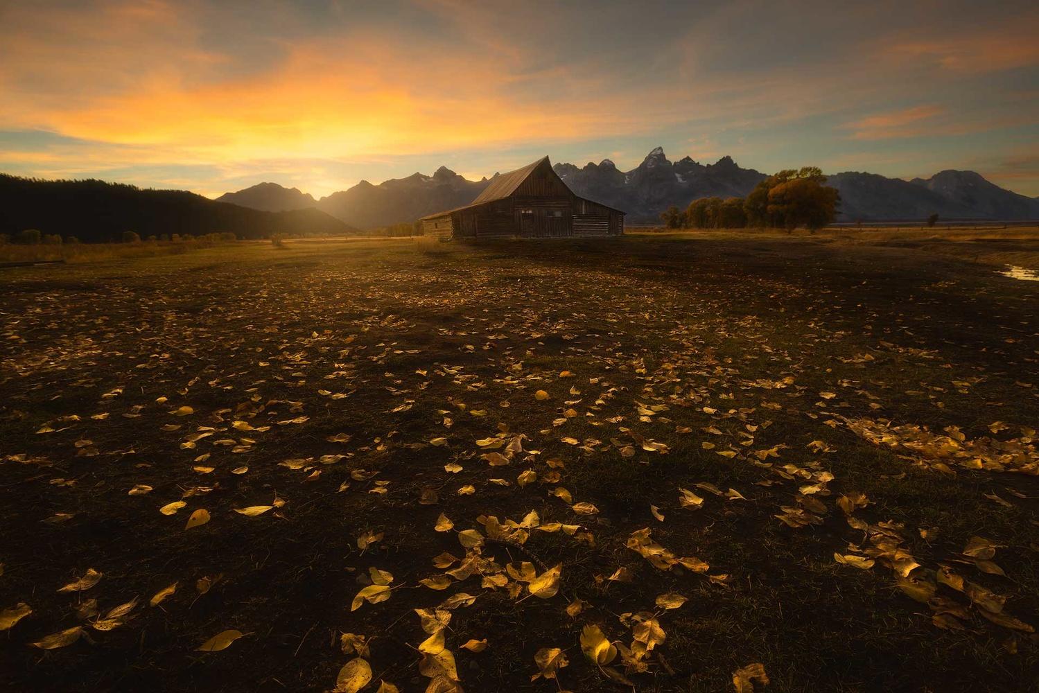 The golden Barn by Mario Suclla